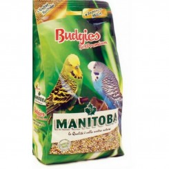 Manitoba Budgies Best...