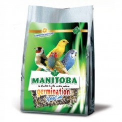 Manitoba Germination Speed...
